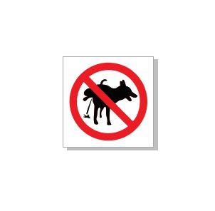 urineeriv koer